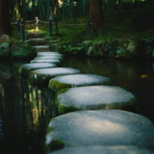 stepping stones in creek